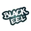 Black Eel